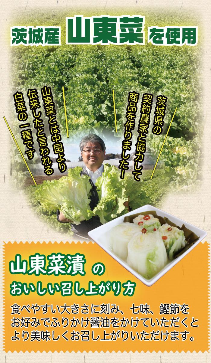山東菜漬。幻の漬物ともいわれる山東漬は、白菜漬けよりも柔らかく優しい味が特徴。